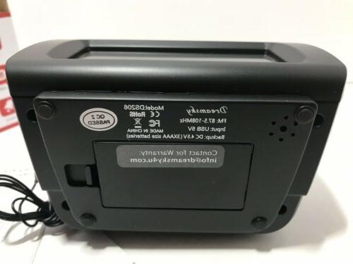 DreamSky Alarm Clock FM Radio USB Charging, Temperature,