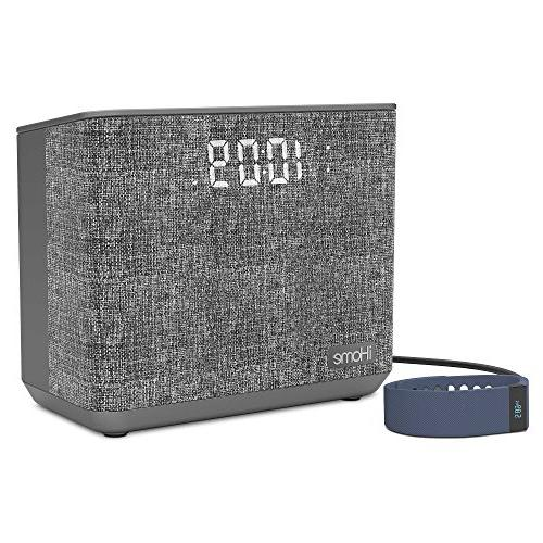 iHome Alarm FM with Charging -Gray
